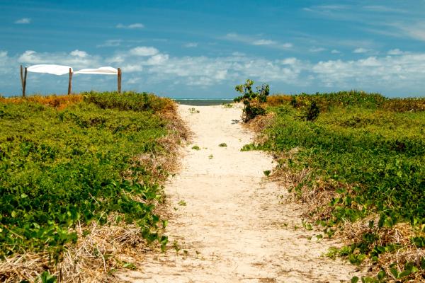 Praia de Maceió com areias brancas e um céu azul