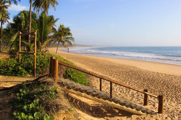 Praia de Maragogi num por do sol com árvores ao fundo e uma escada de madeira