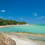 Conheça as 6 melhores Praias de Maragogi!