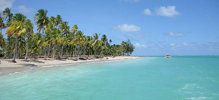 Melhores Praias de Maceió: Praia de Antunes em Maceió com água cristalina e árvores de fundo