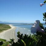 Ilha do Mel Paraná: O que fazer, como chegar e dicas de passeios!
